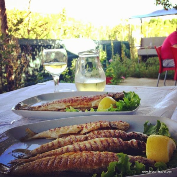 food tushemisht lake ohrid albania balkans