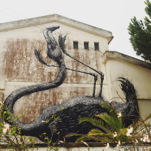 ROA Flamingo street art Lagos, Algarve, Portugal