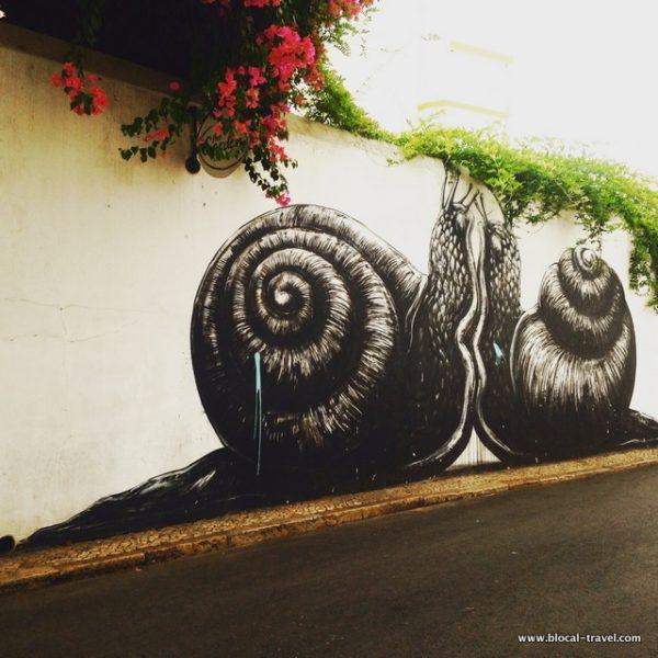ROA snails street art Lagos, Algarve, Portugal