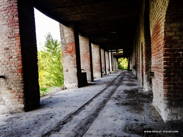 Milanese e Azzi cemento urbex abandoned places in piedmont