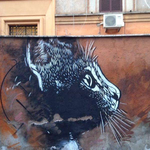 c215, tor pignattara, rome, graffiti street art