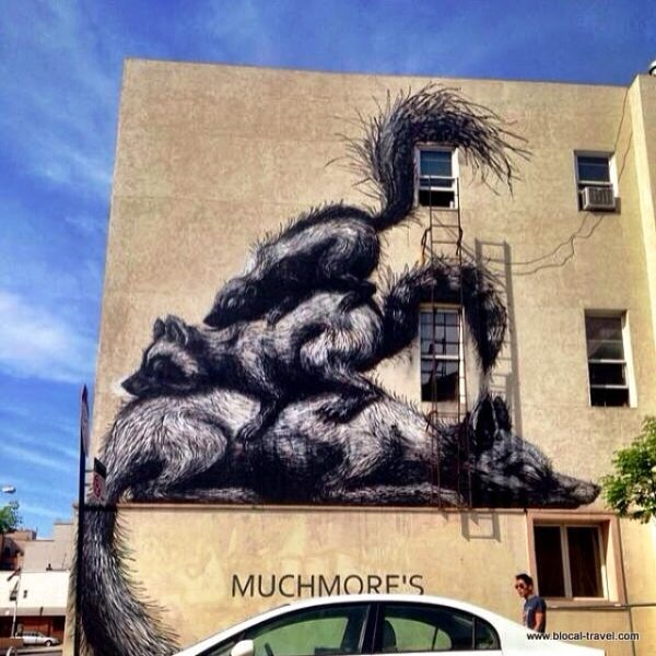 ROA street art williamsburg brooklyn new york