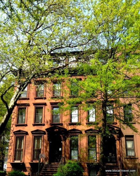 clinton hill brownstone brooklyn new york