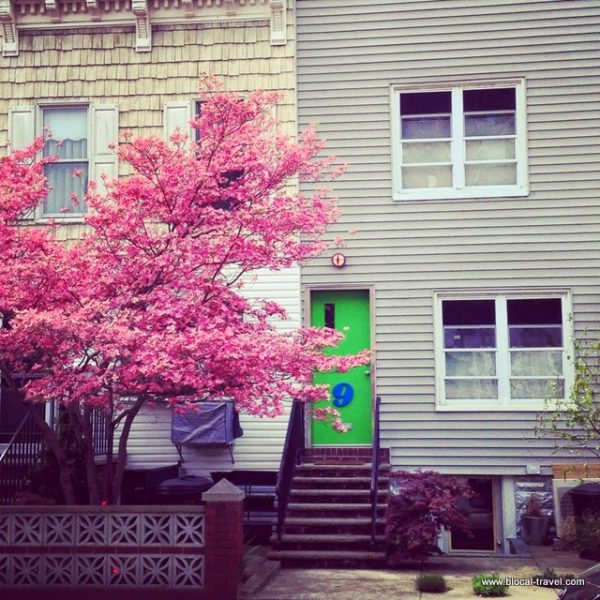 Windsor Terrace, Brooklyn, New York