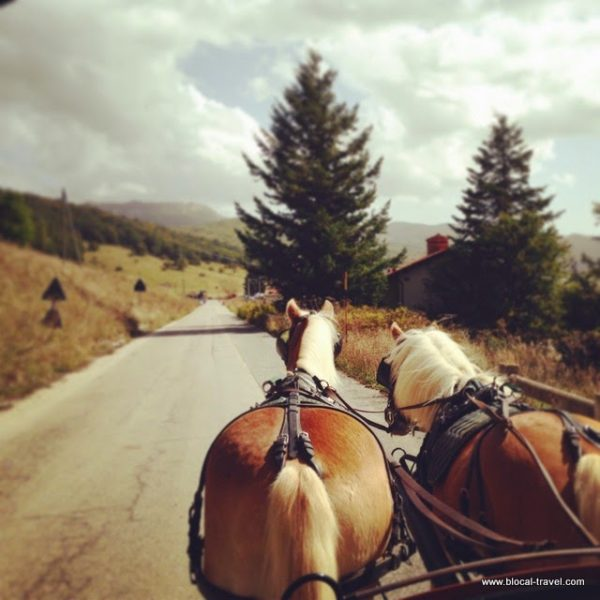 gig ride in majella national park