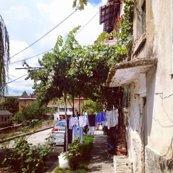 erseke, albania