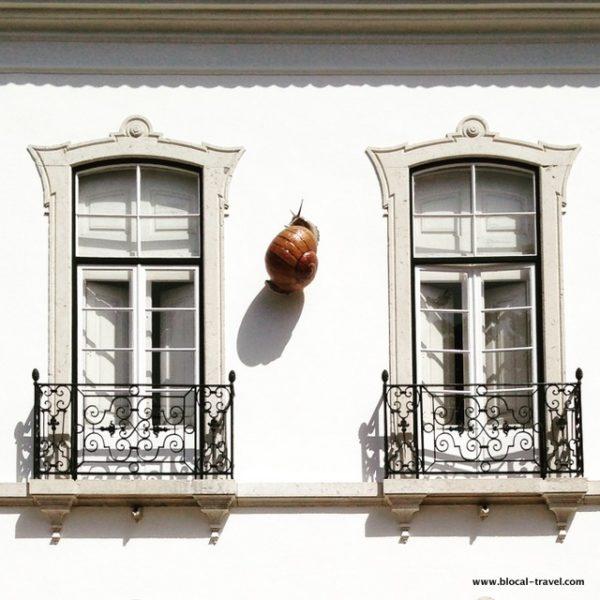 Bordalo Pinheiro gardens, Lisbon, Portugal