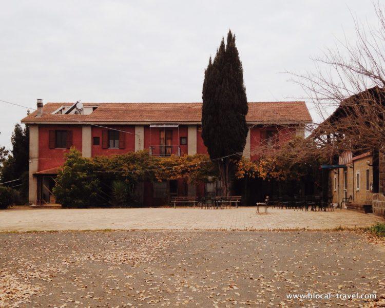Cobragor Rome