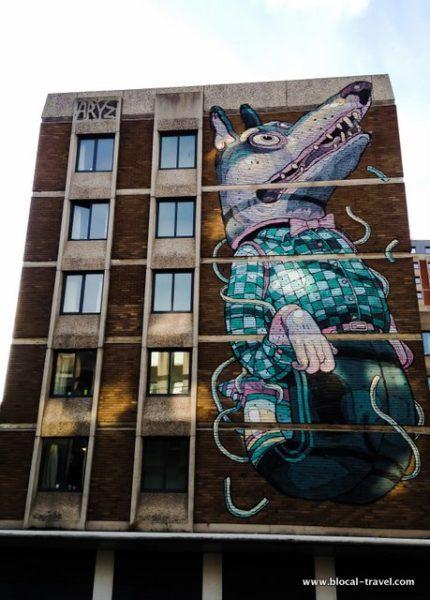 street art aryz bristol