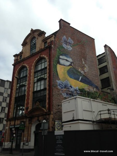 faunagraphic manchester street art guide