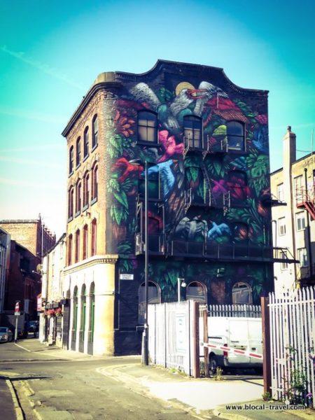 mateus bailon manchester street art guide