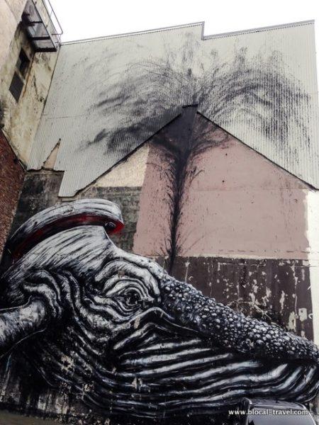roa nuart stavanger street art guide