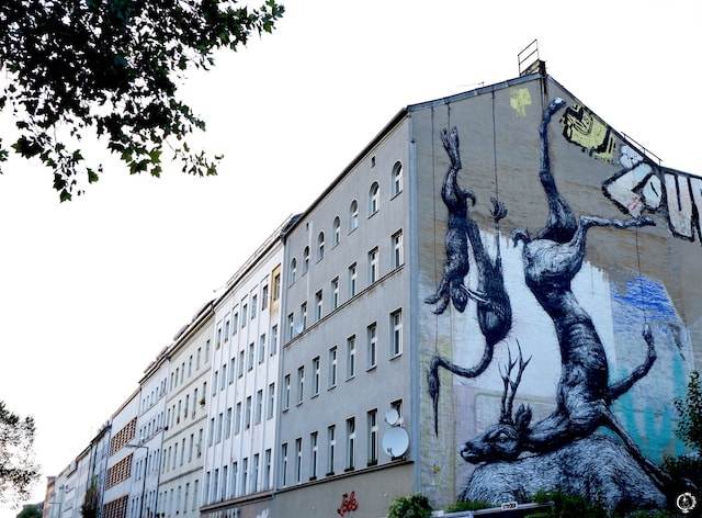 ROA in Berlin street art