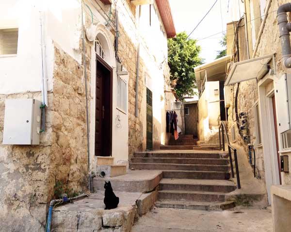 haifa trip to israel