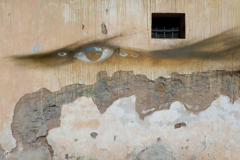 My Dog Sighs in Rome Forgotten Project