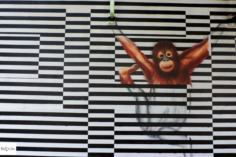 upfest 2018 street art festival bristol Smok