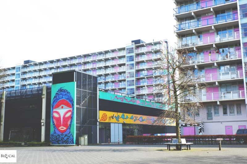 Rimon Guimaraes street art in Amsterdam