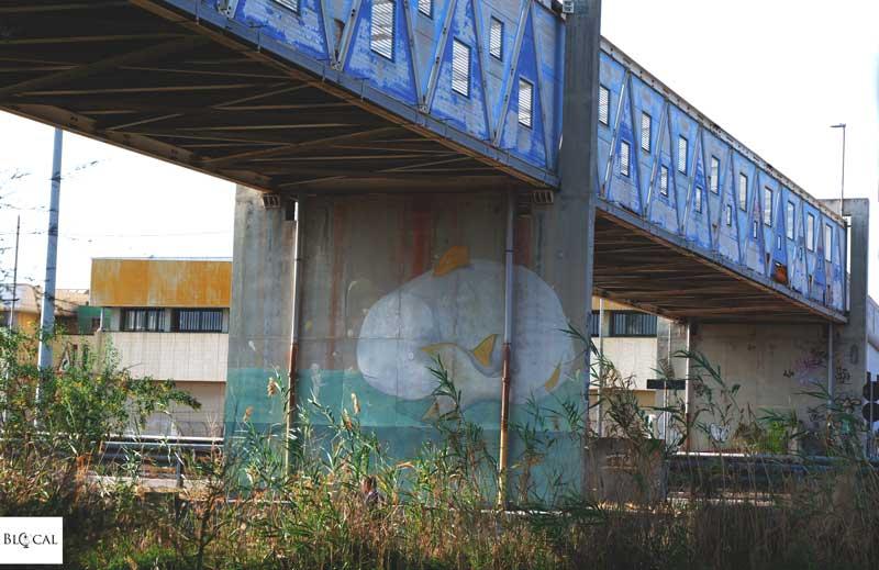 daniele dgr street art galleria del sale cagliari