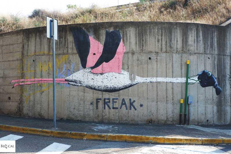 freak street art cagliari galleria del sale