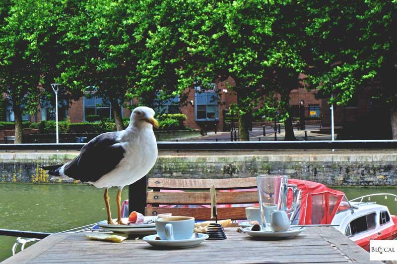 weekend in Bristol harbour