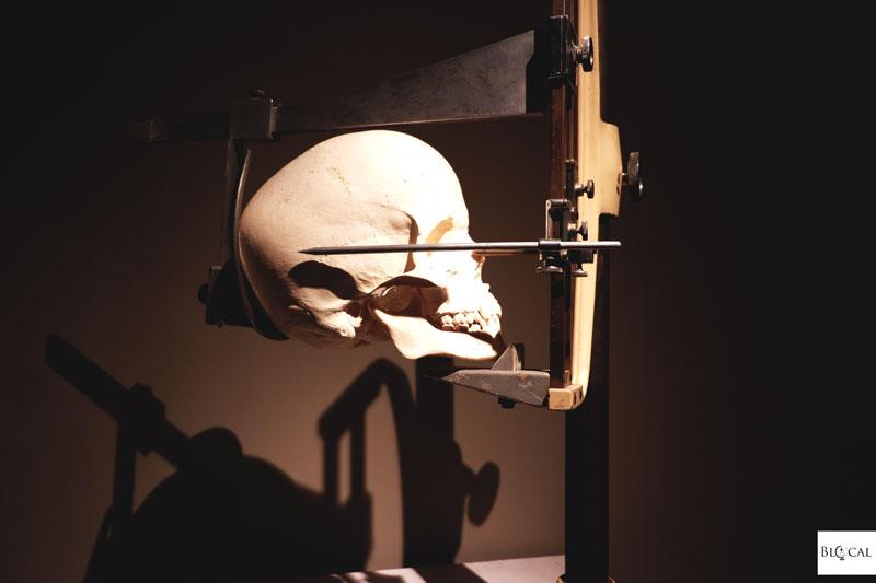 museum dr guislain ghent