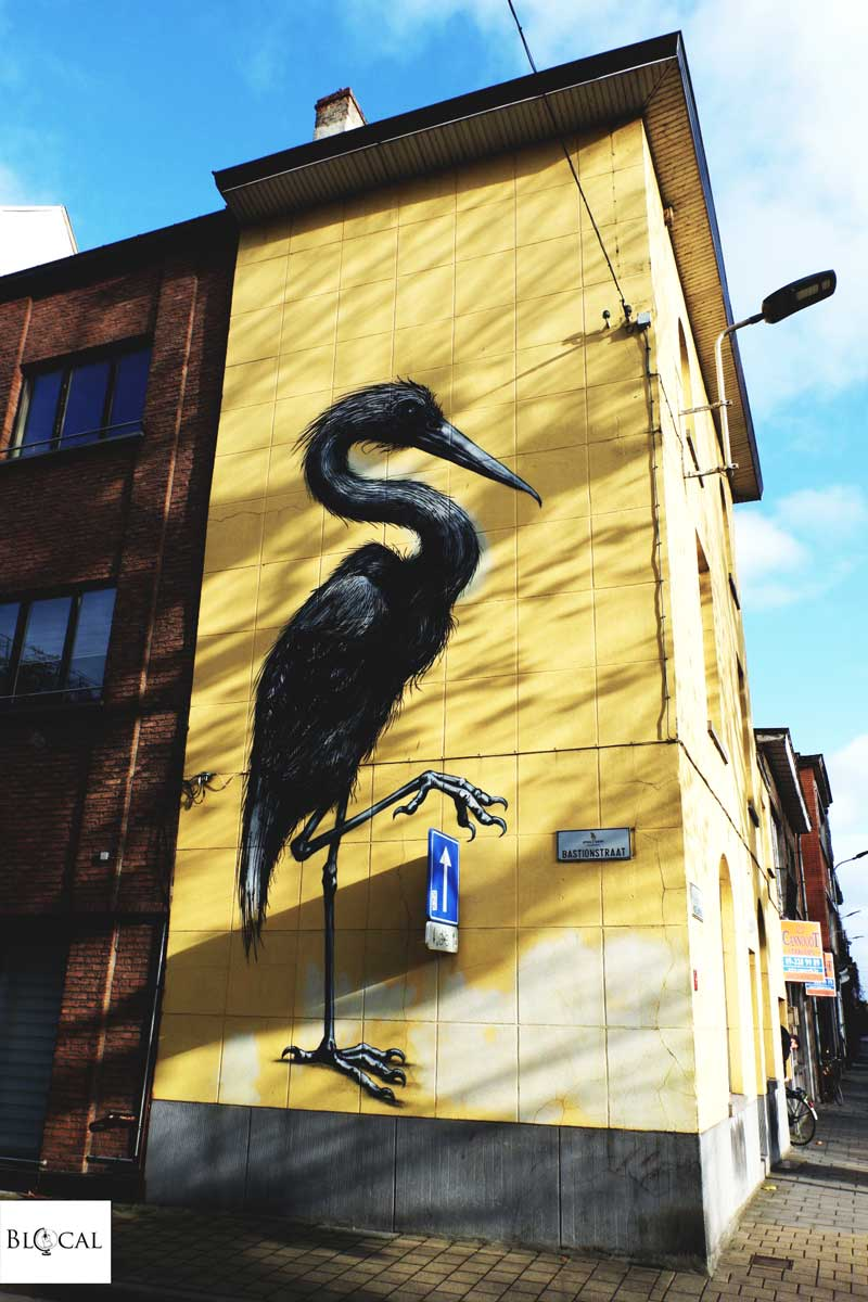 ROA street art in ghent