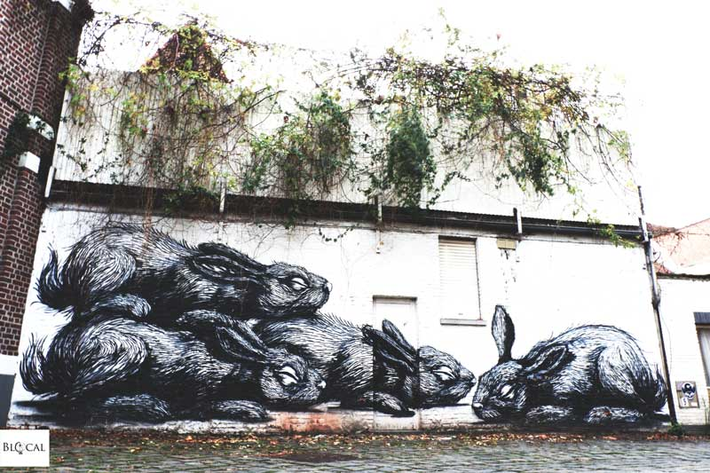 rabbits roa street art in ghent