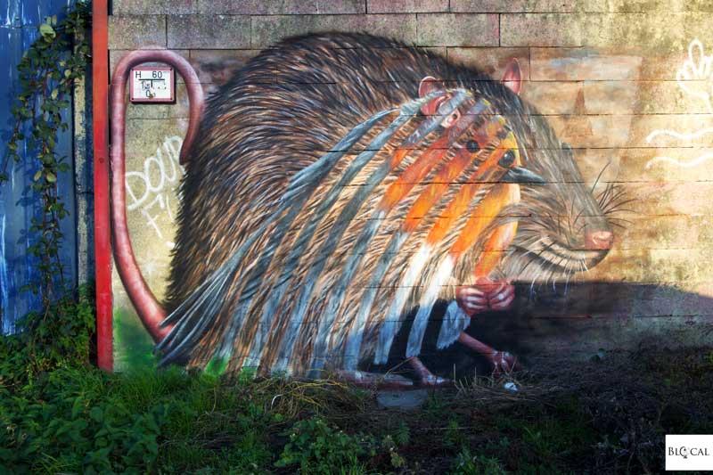 street artist cee pil interview ghent