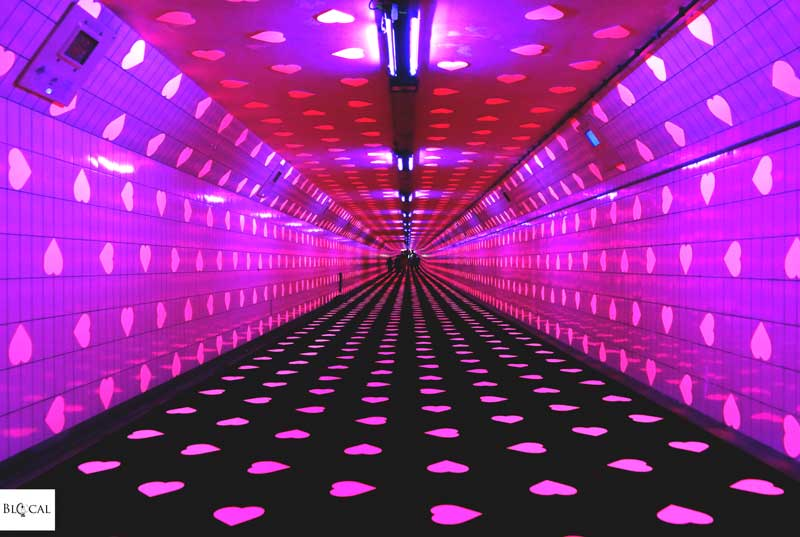 tunnel of love maastunnel rotterdam