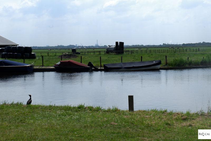 Amsterdam area waterland twiske