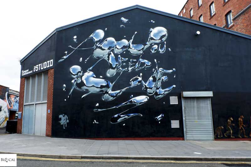 Bonzai street art Liverpool