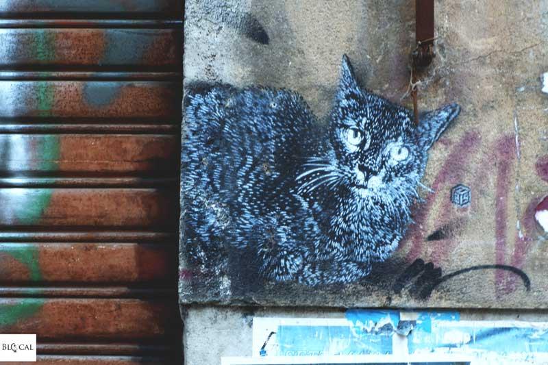 C215 stencil street art palermo