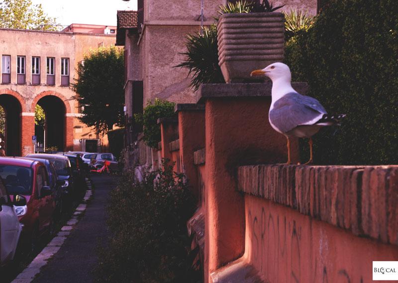 Garbatella neighbourhood Rome